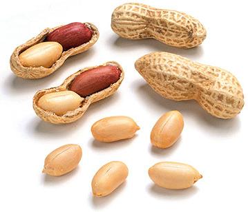 peanut-img1